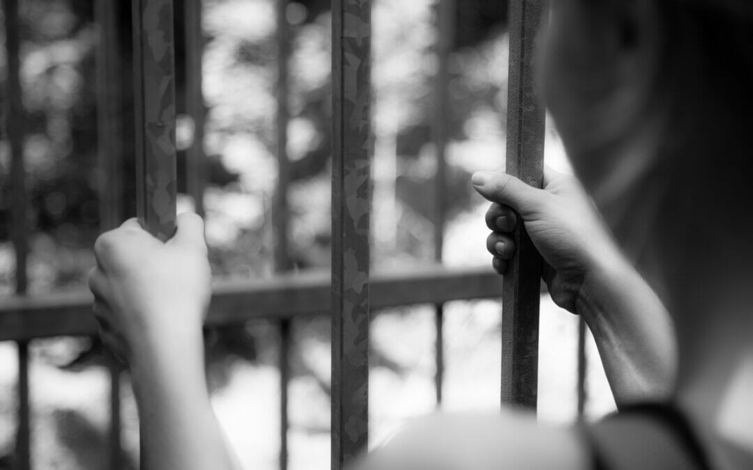 Assistance for Incarcerated and Reentering Domestic Violence Survivors